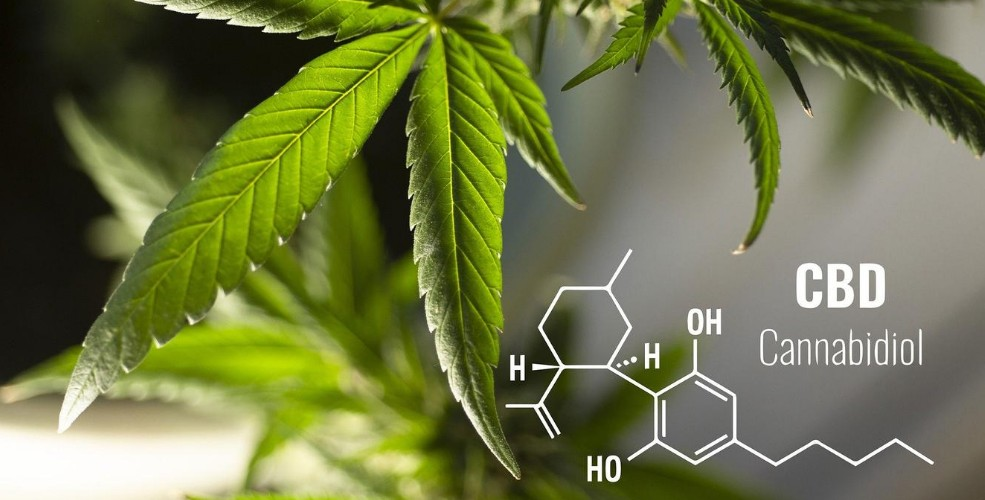 5 Benefits of Taking CBD Capsules You May Not Know